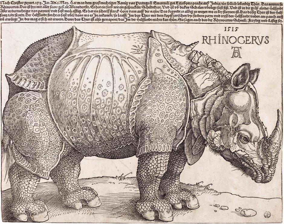 The_Rhinoceros_(NGA_1964.8.697)_enhanced.png